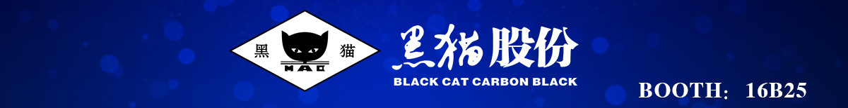 BLACKCAT  CORPORATION - CPS21
