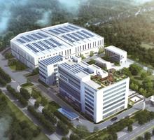 Qingdao city of shandong province
